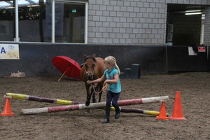 Ponykamp 2017 - week 32